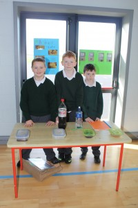 4th Class Science Exhibition 021