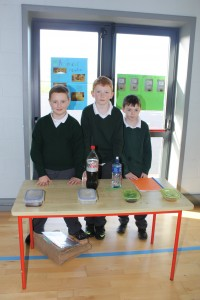 4th Class Science Exhibition 022