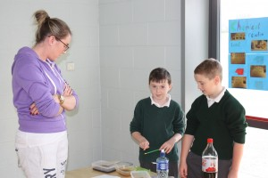4th Class Science Exhibition 028